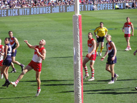 aussie-rules-fremantle-dockers-450