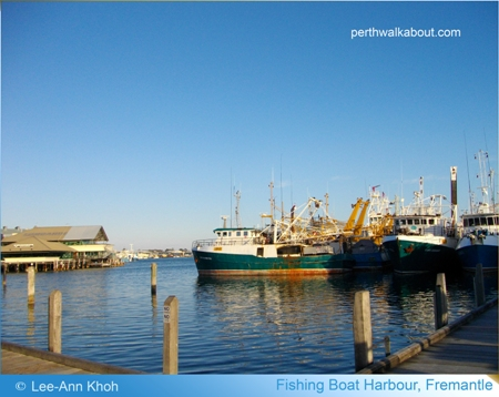 fishing-boat-harbour-fremantle