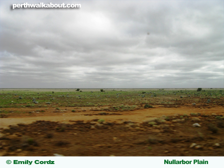 nullarbor-plain