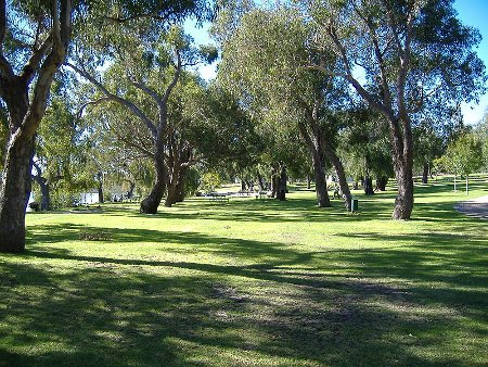 yanchep-national-park-1